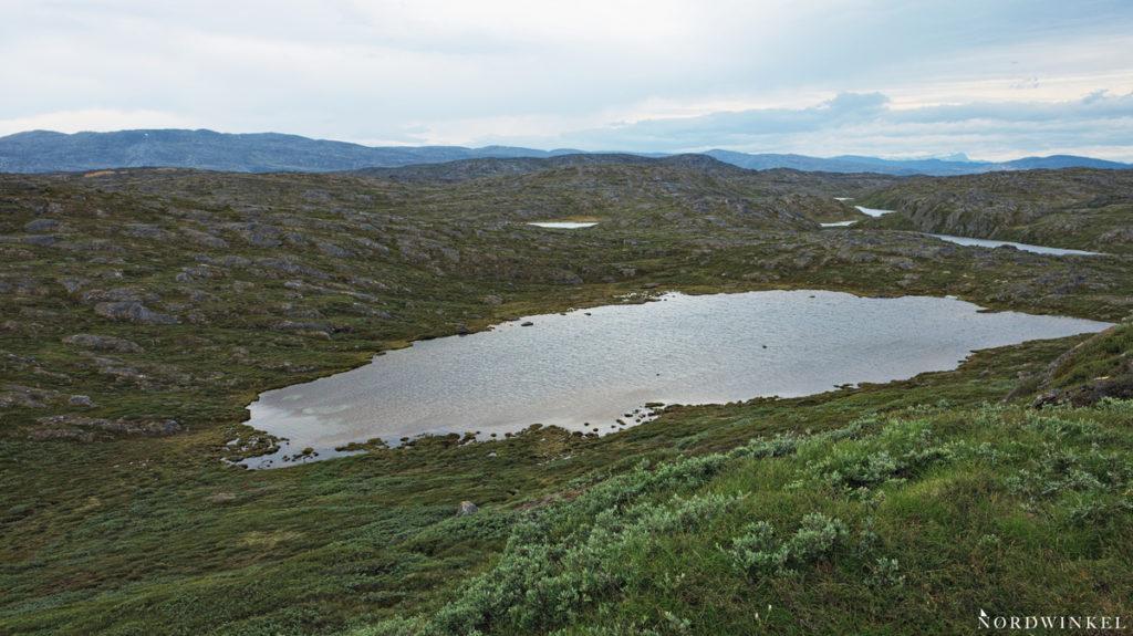Blick über die grüne Seen durchzogene Fjälllandschaft auf dem Arctic Circle Trail