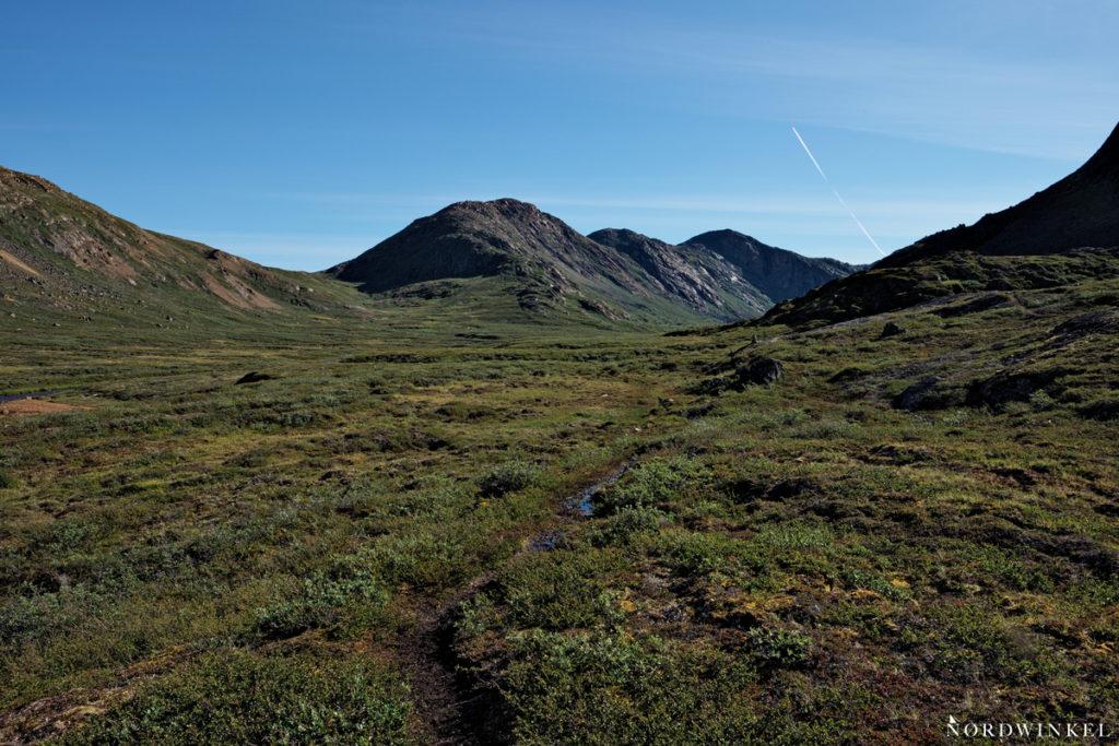ein dunkel matschiger Pfad schlengelt sich durch die arktische Tundra