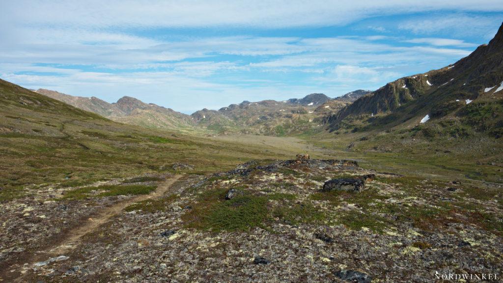 karge landschaft in westgrönland mit schrofen felsen und flechten, moosen und kriechweiden