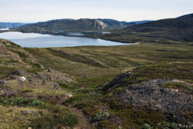 the small lake Kangerluatsiarsuaq view over rocky and green landscape