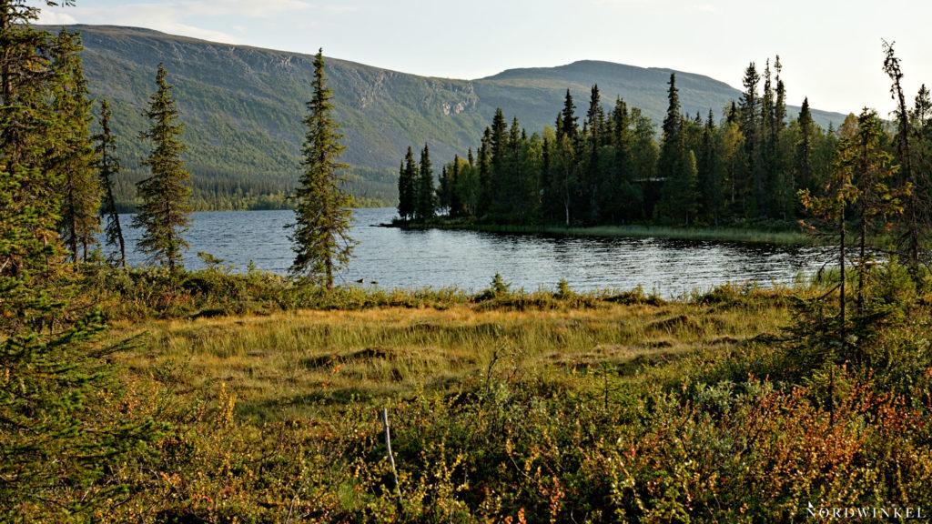 Blick über die grüne Vegetation der Pårte-Hütte