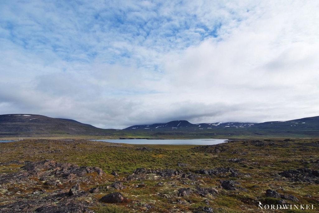 blauer himmel über der arktischen tundra auf dem zweiten landgang meiner grönlandreise