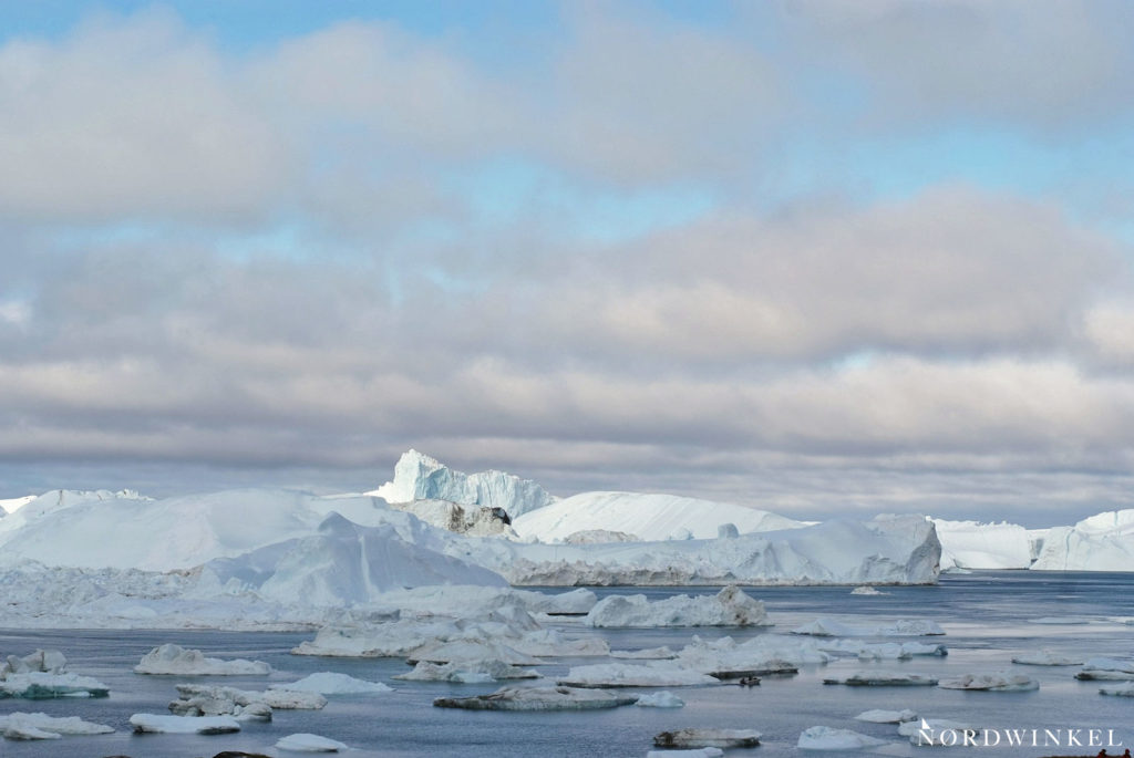 eisberge und eisschollen treiben im eisfjord bei ilulissat