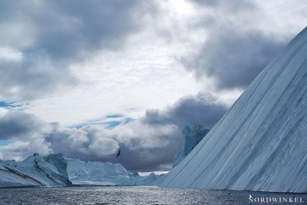 riesige eisberge im eisfjord ilulissat