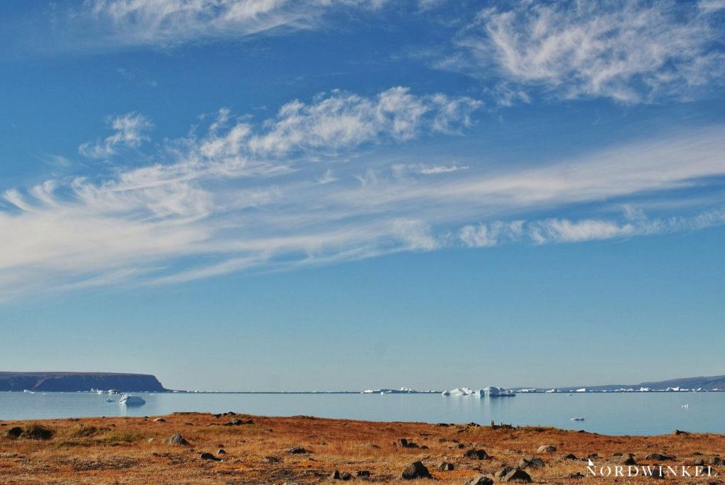 rötliche vegetation an der küste eisberge auf dem meer