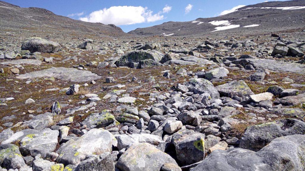 steinwüste im jotunheimen nationalpark in norwegen