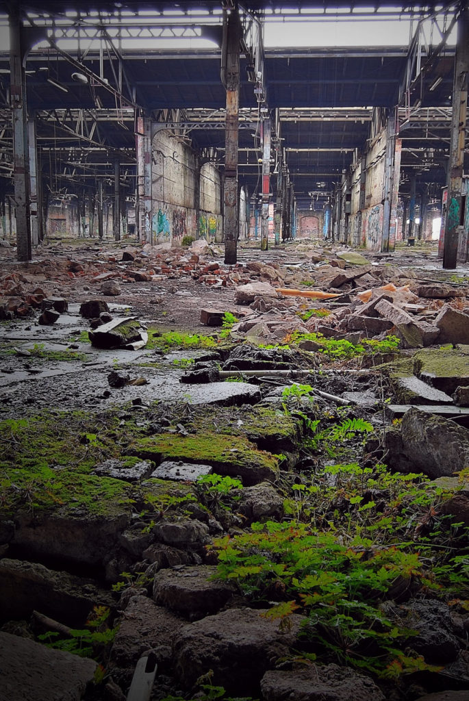 industrieruine wo zwischen schutt grüne pflanzen wachsen